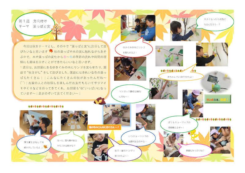 ゆき組(4歳児) 葉っぱと実